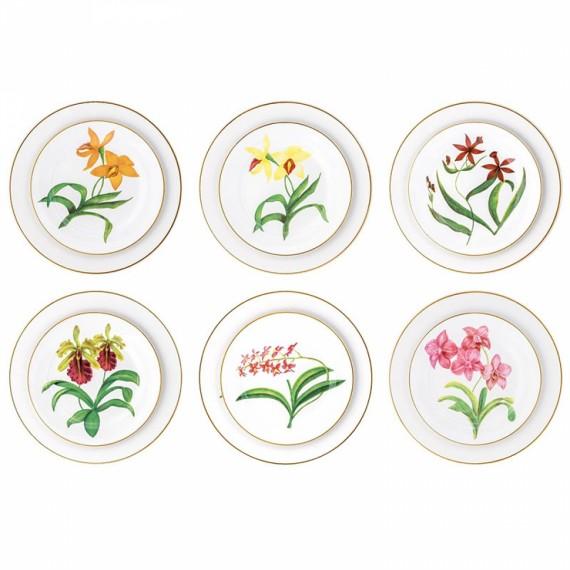 Conjunto Pratos Orquídeas Matisse Casa
